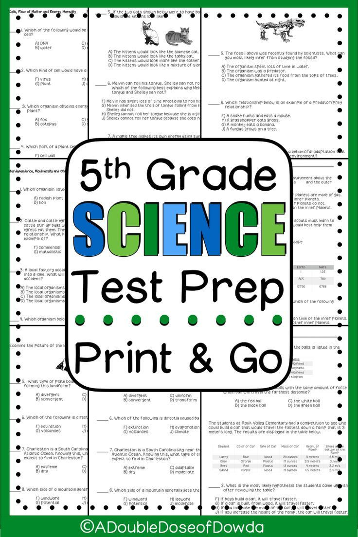 5th Grade Science Practice Worksheets End Of Year Science Review Test Prep 5th Grade
