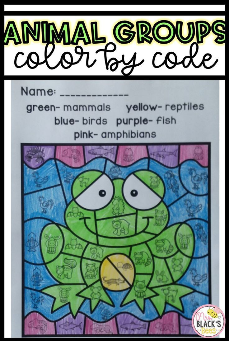 Amphibian Worksheets for Second Grade Animal Groups Color by Code