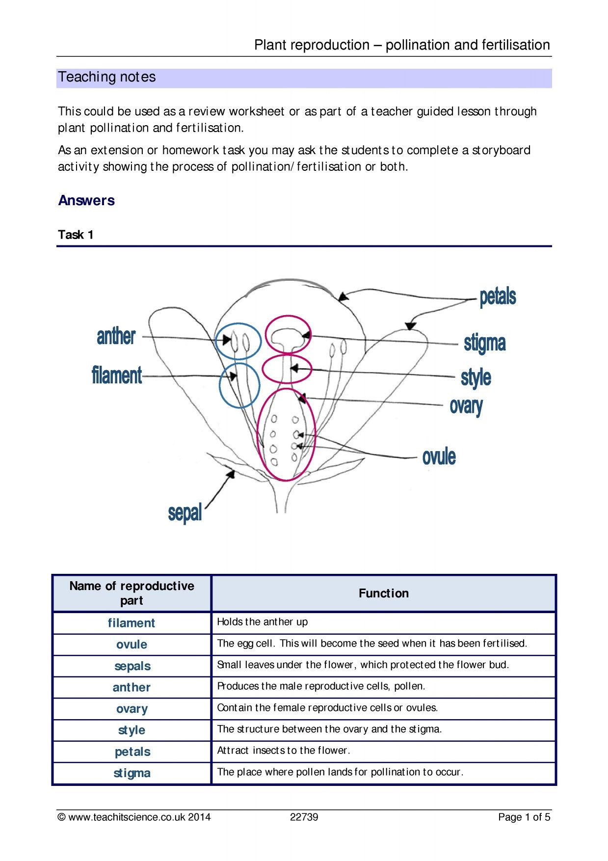 Free Printable Biology Worksheets Plant Reproduction Pollination and Fertilisation