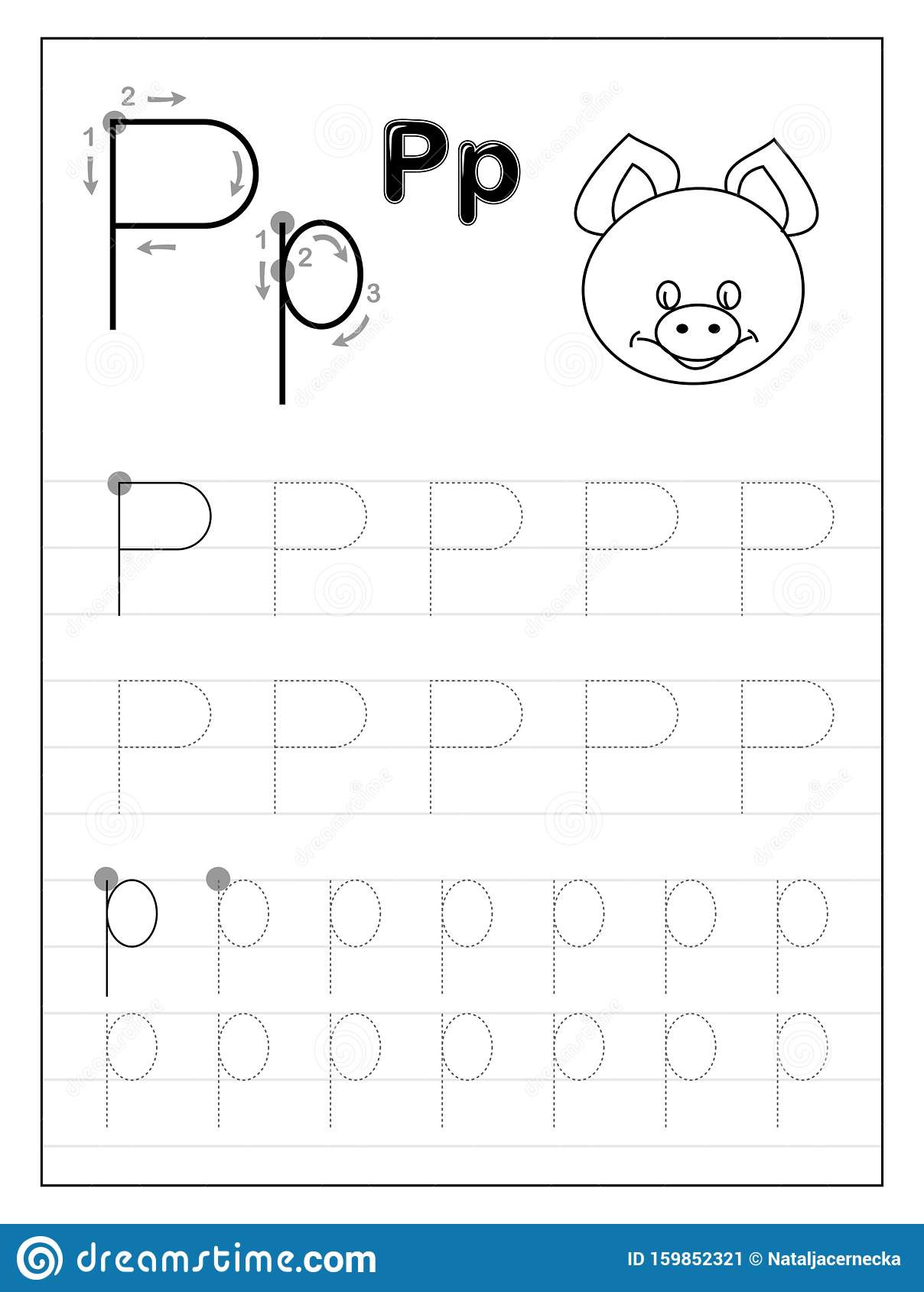 Letter P Worksheets Preschool Tracing Alphabet Letter P Black and White Educational Pages