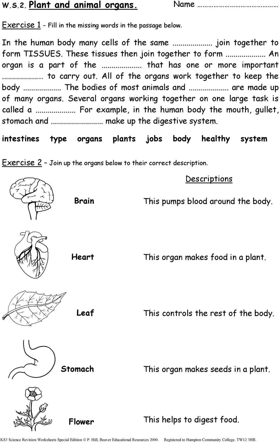 Middle School Science Worksheets Pdf Ks3 Science Revision Worksheets Pdf Free Ks2 Special Edition