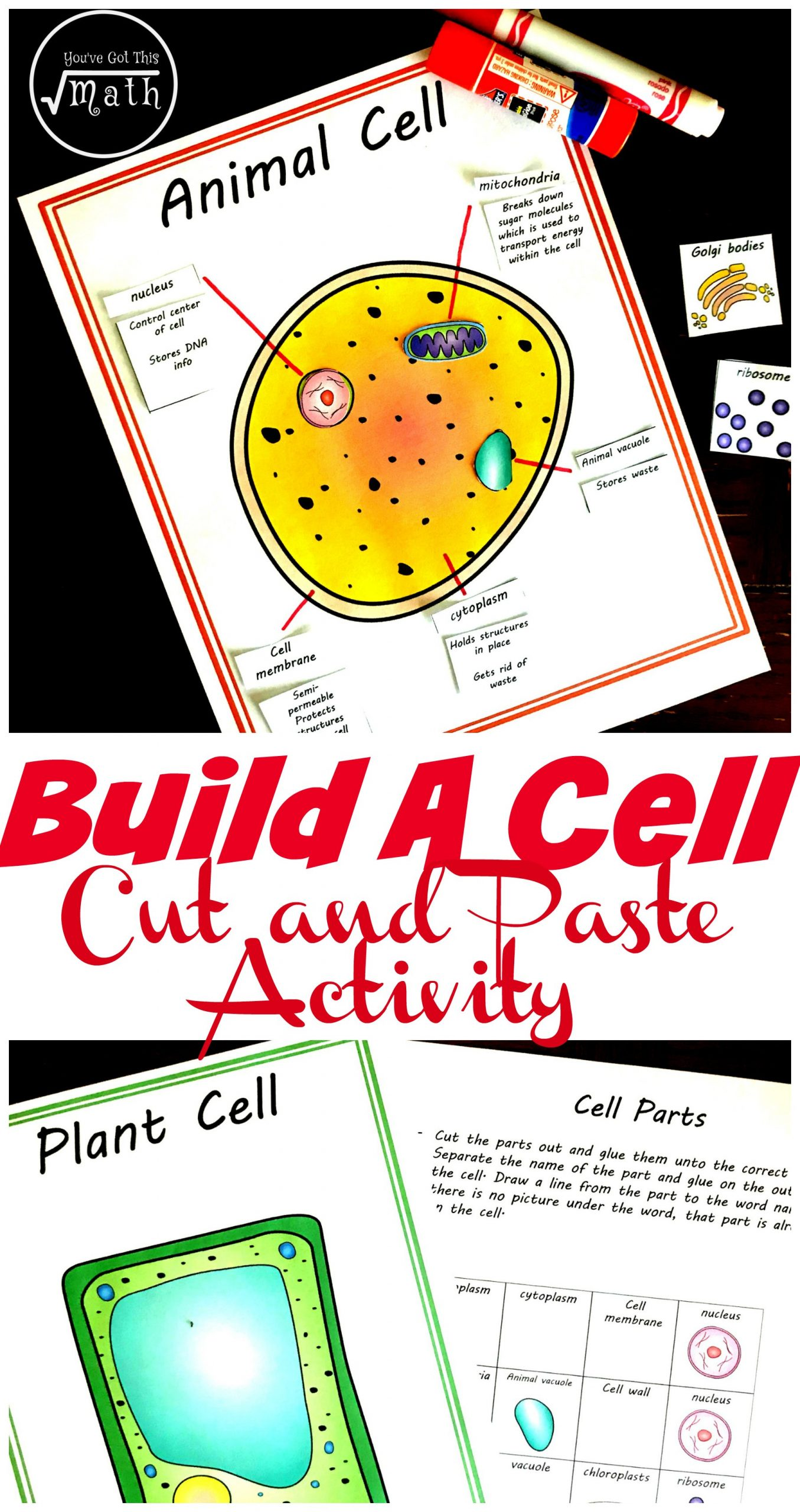 Printable Cell Worksheets Free Cut and Paste Animal and Plant Cell Worksheet