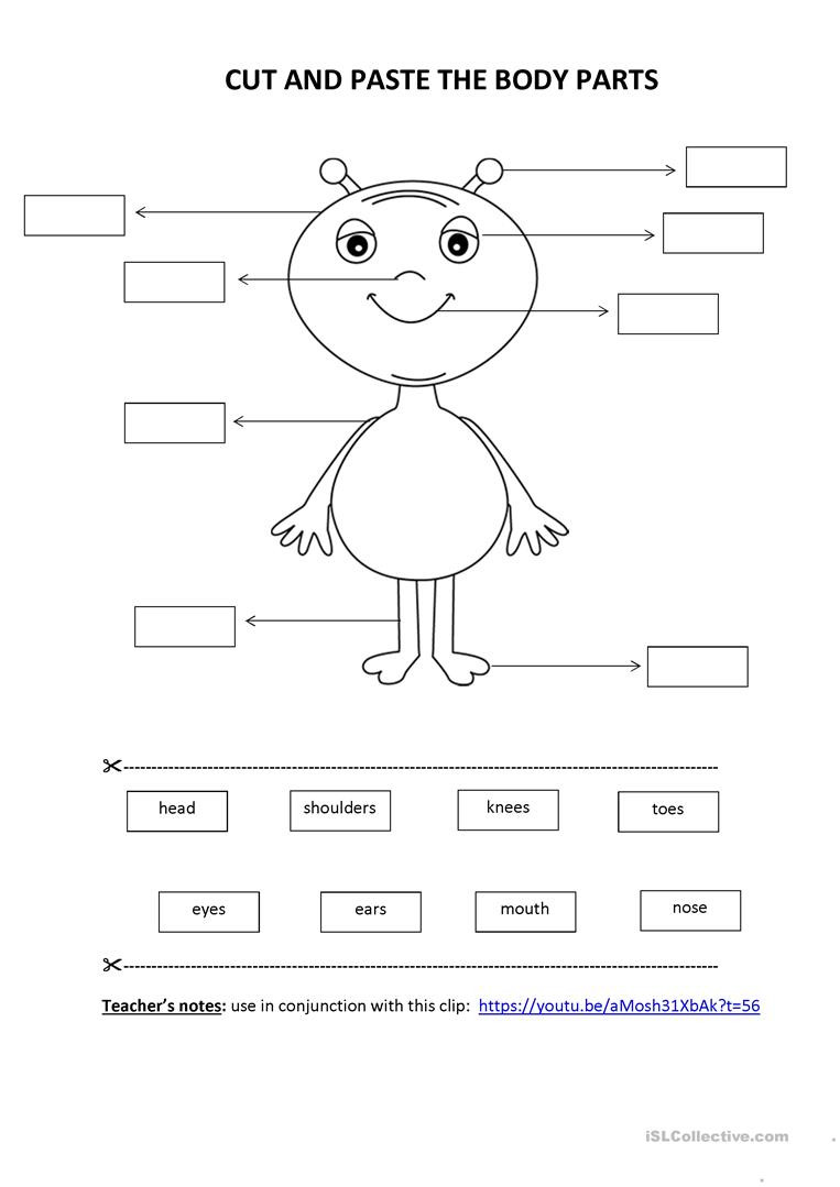 Printable Cut and Paste Worksheets Cut & Paste Activity Body Parts English Esl Worksheets