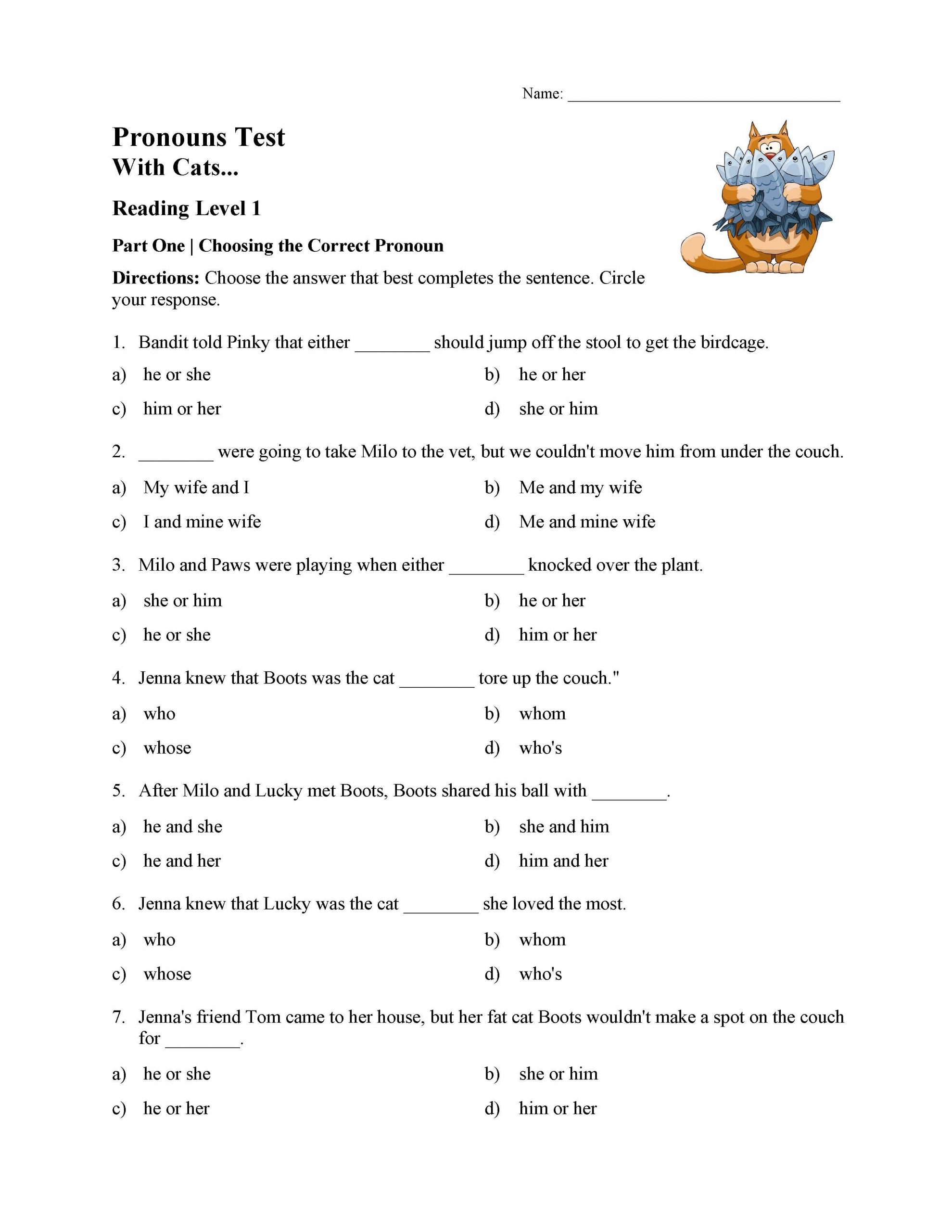 Pronoun Worksheets 5th Grade Pronouns Test with Cats Reading Level 1