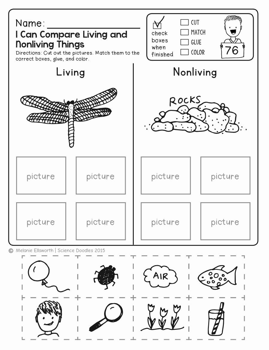 Science Worksheet First Grade Animal Coloring Pages for 1st Grade In 2020