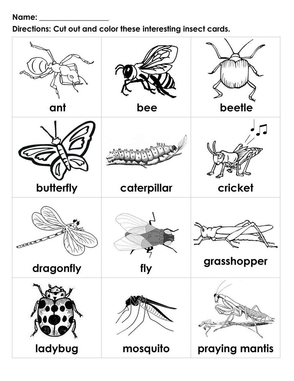 Bug Worksheets for Preschool Bugs for Kids to Color