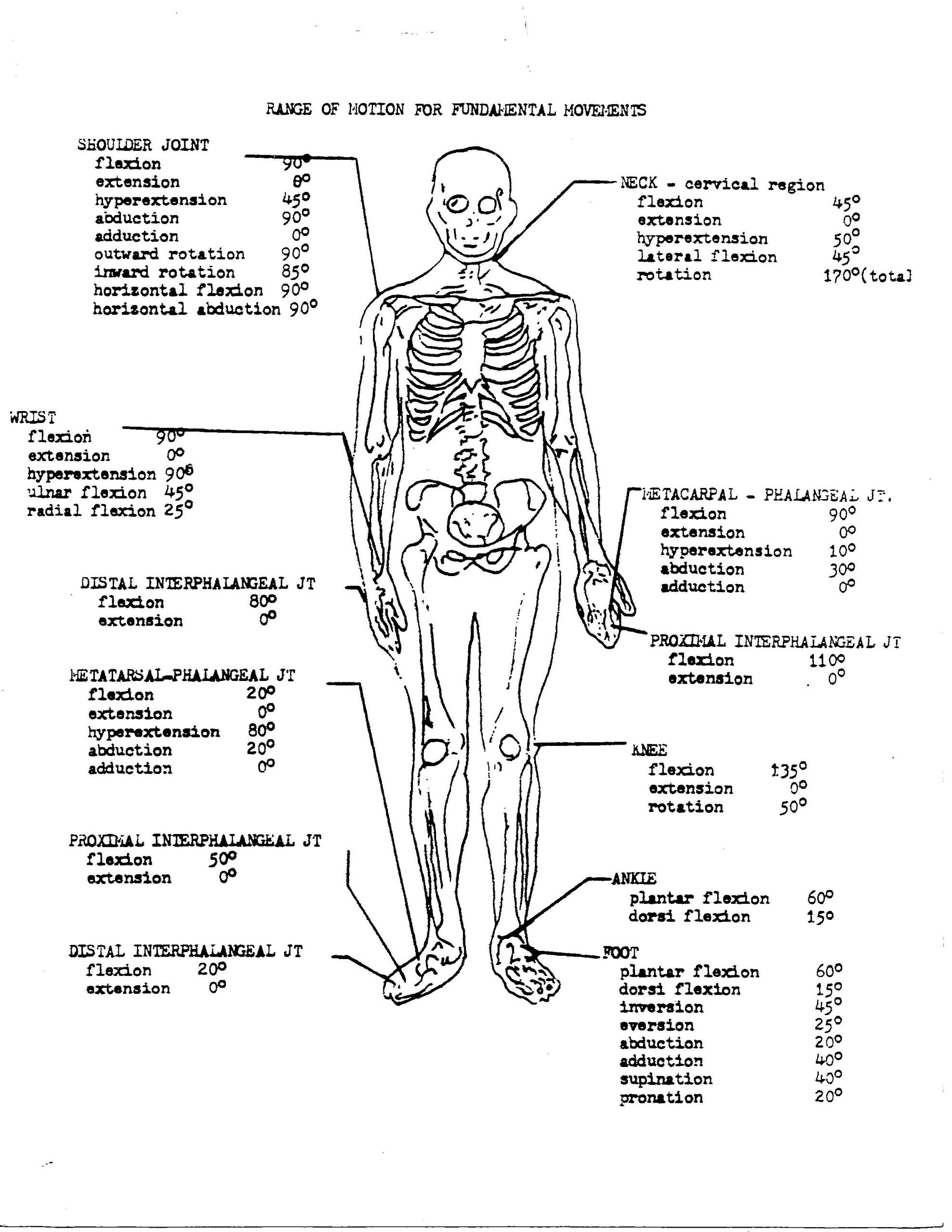 Free Printable Anatomy Worksheets Coloring Book 34d51fb0a1bf6e1ce8ce8a B64ca Free