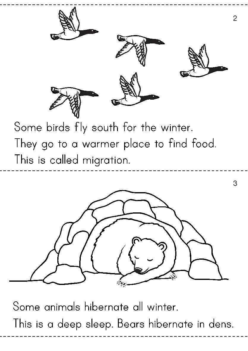 Hibernation Worksheet for Preschool Winter is Cold there is Snow On the Ground People Live In