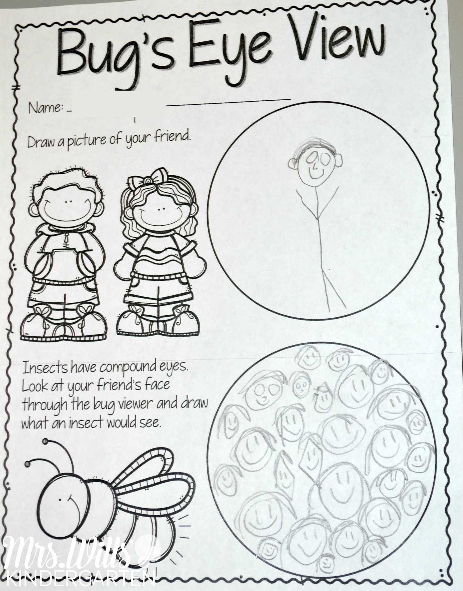 Insect Worksheets for First Grade Insect Lesson Plans for Kindergarten