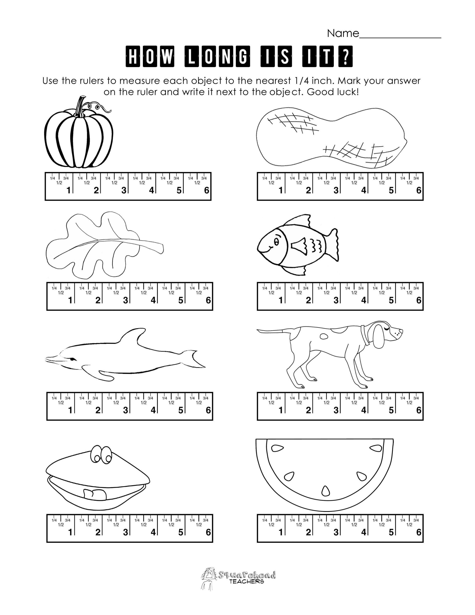 Measurement Worksheets for 3rd Grade Pin On Measurement Worksheets