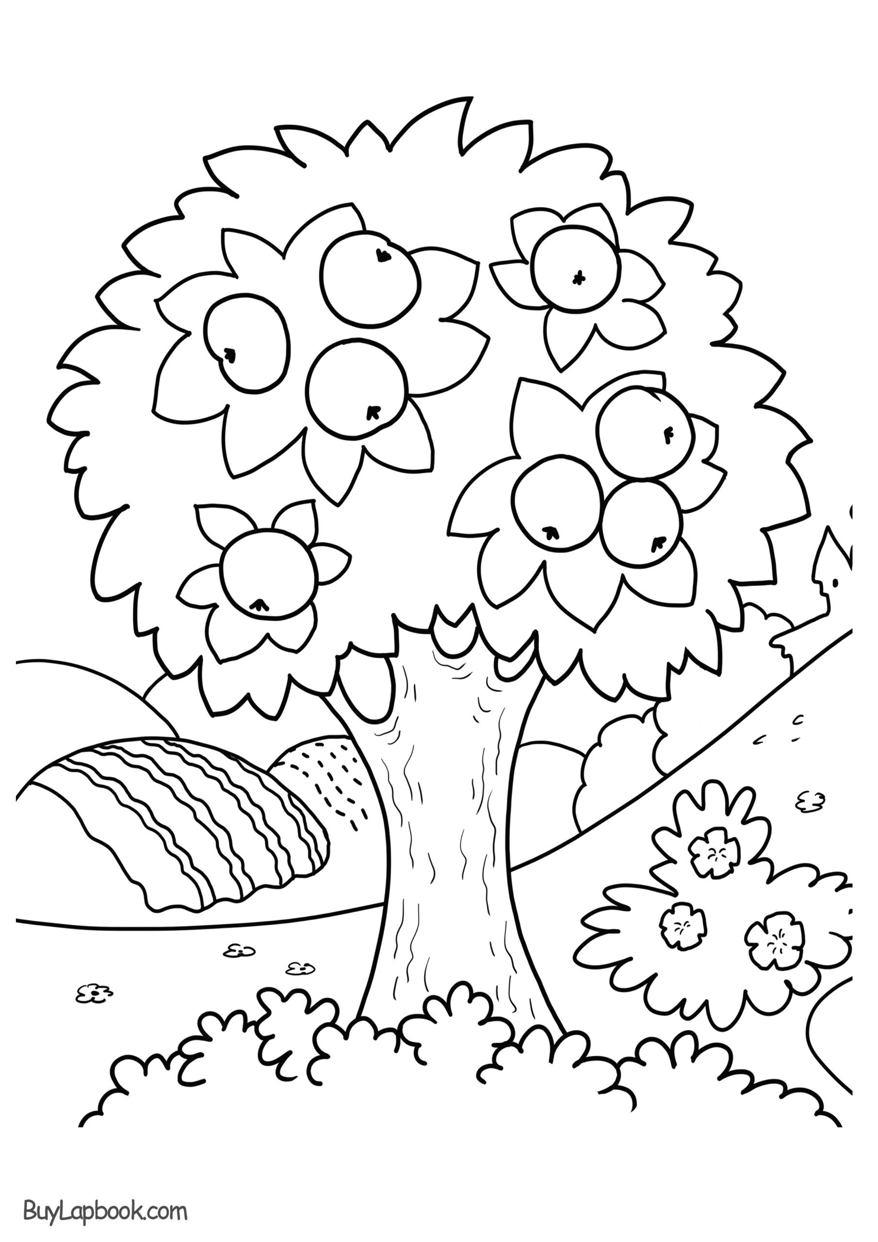 Seasons Worksheets for First Grade Four Seasons Coloring for Kindergarten Weather and Climate