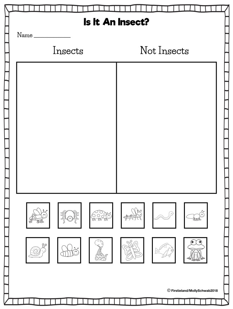 Sorting Worksheets for First Grade Insect Activities In First Grade Firstieland